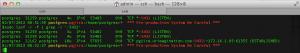 PostgreSQL_Greenplum3